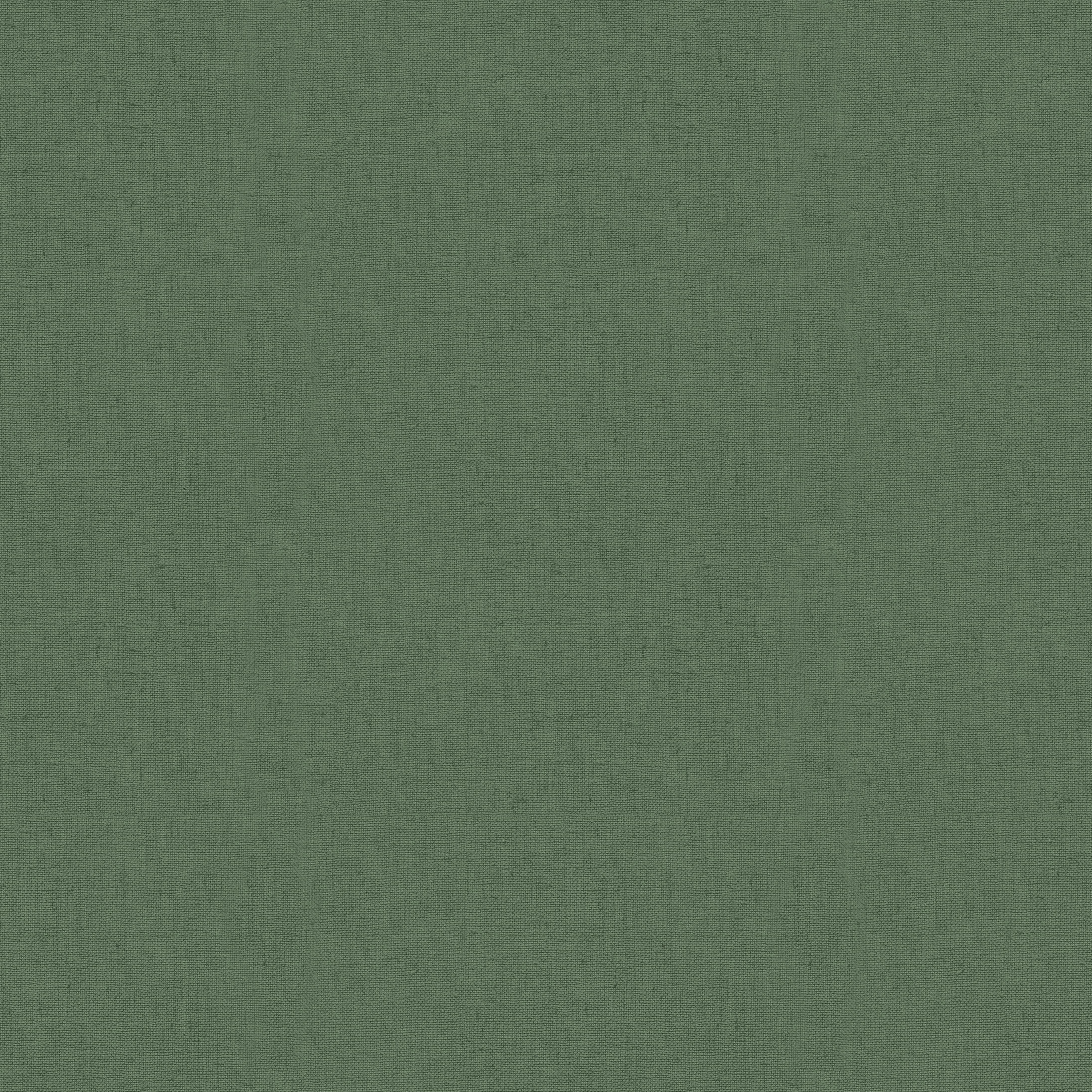 esterilla plantes lisa_1.pdf
