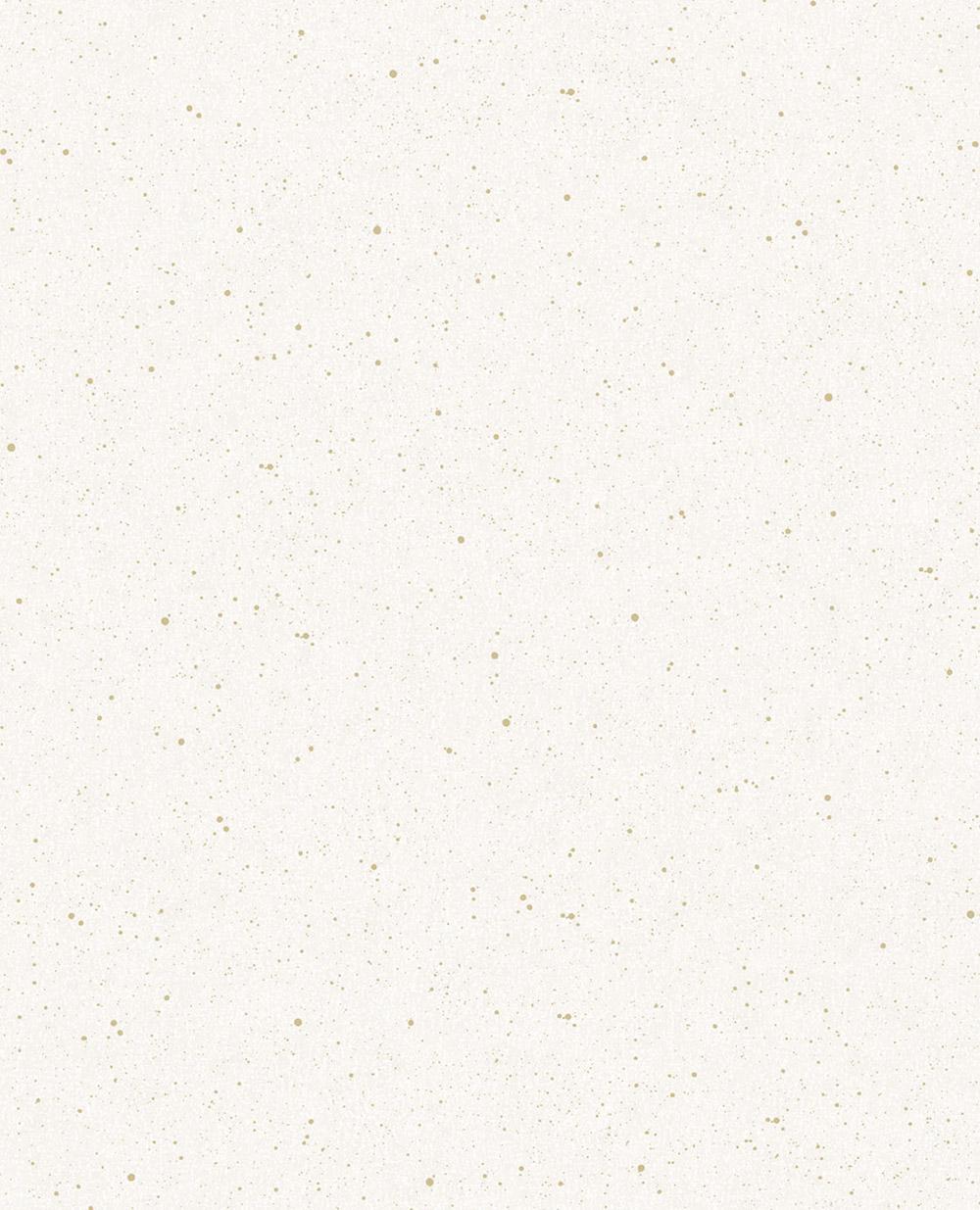 Vivid-384520